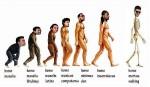 evolutie sau ce