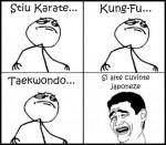 stiu karate