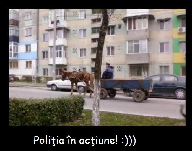 politia in actiune