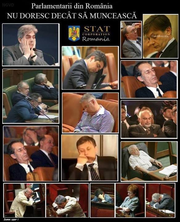 parlamentarii din romania