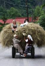 IN ROMANIA